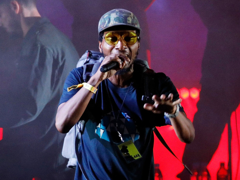 Del The Funky Homosapien Hospitalized After Falling Off Stage At Roskilde Festival 2018