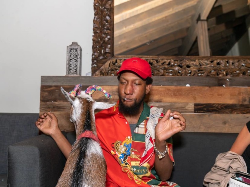 """Left Brain Celebrates """"Mind Gone, Vol. 2"""" With A Goat Yoga Release Party"""