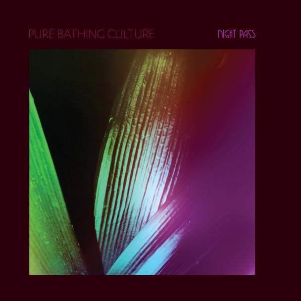 Pure-Bathing-Culture-quotDevotionquot