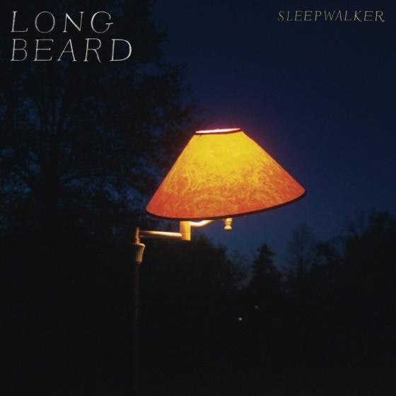 Stream Long Beard Sleepwalker