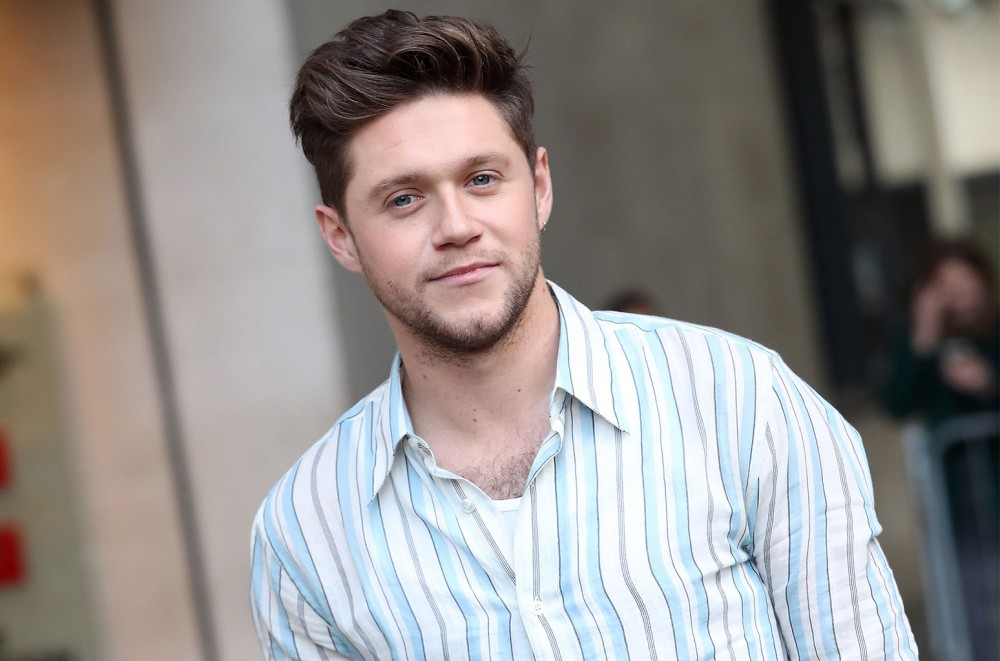 Niall Horan Just Masterfully Covered Post Malone's 'Circles' With a Surprise Mash-Up