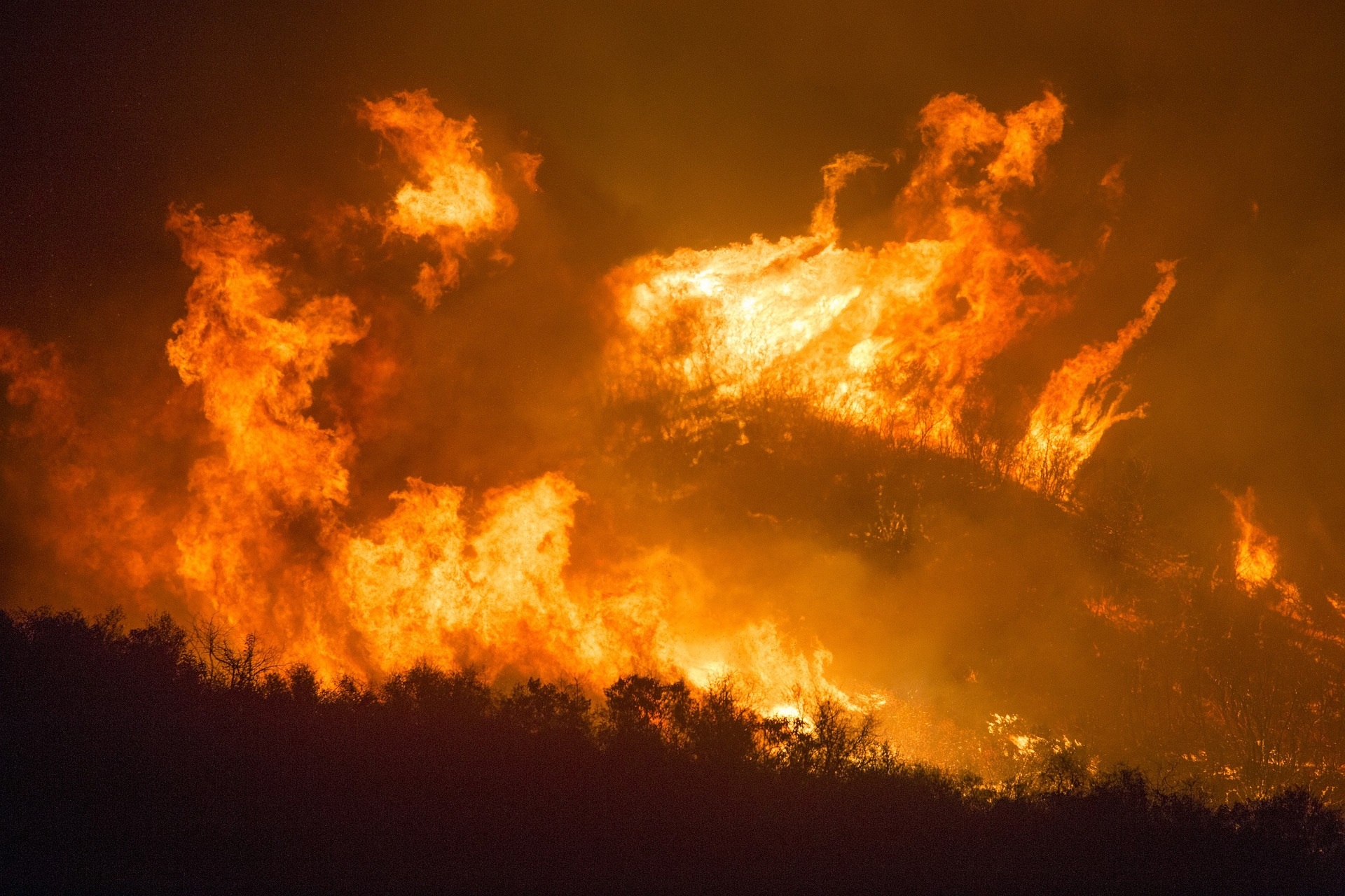 Ongoing West Coast Fires Are Affecting Cannabis Farms At Alarming Rates