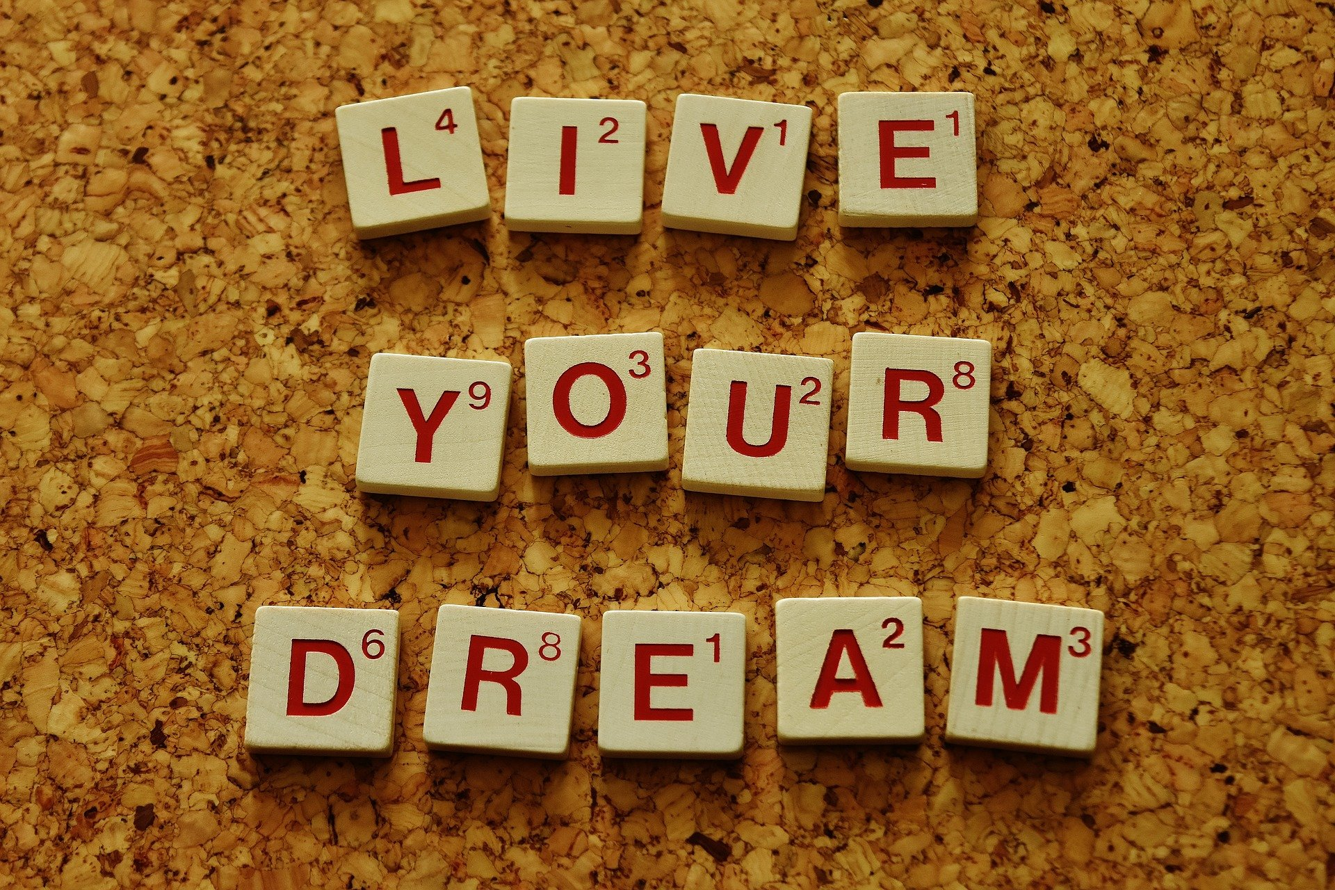Trying to Make Your Dreams Come True? Here are Some Quotes to Help Boost Your Motivation