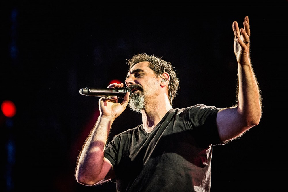 Serj Tankian's New Song 'Elasticity' Is So Delightfully Weird