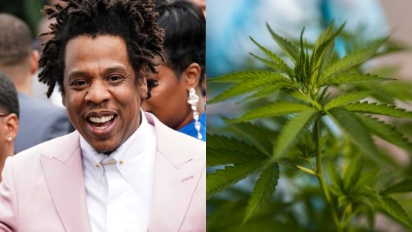 Jay-z Talk's About Cannabis Legalization in New York